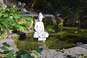 Der meditierende Buddha